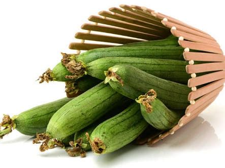 Zucchini Vegetable Meaning In Hindi - Vegetarian Foody's